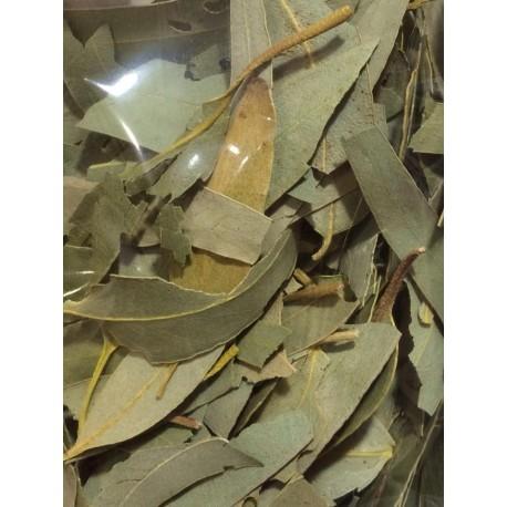 Eucalyptus globuleux (feuille entière) Eucalyptus globulus 50g