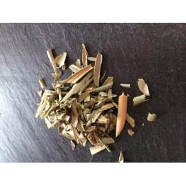 Olivier (feuille coupée mondée) Olea europea 100g